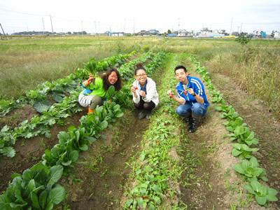 農業3.jpg