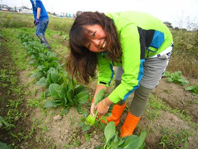 農業2.jpg